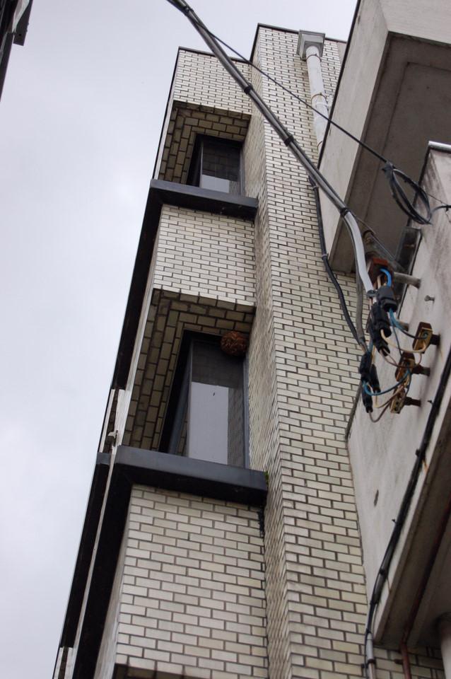 3階の窓の巣