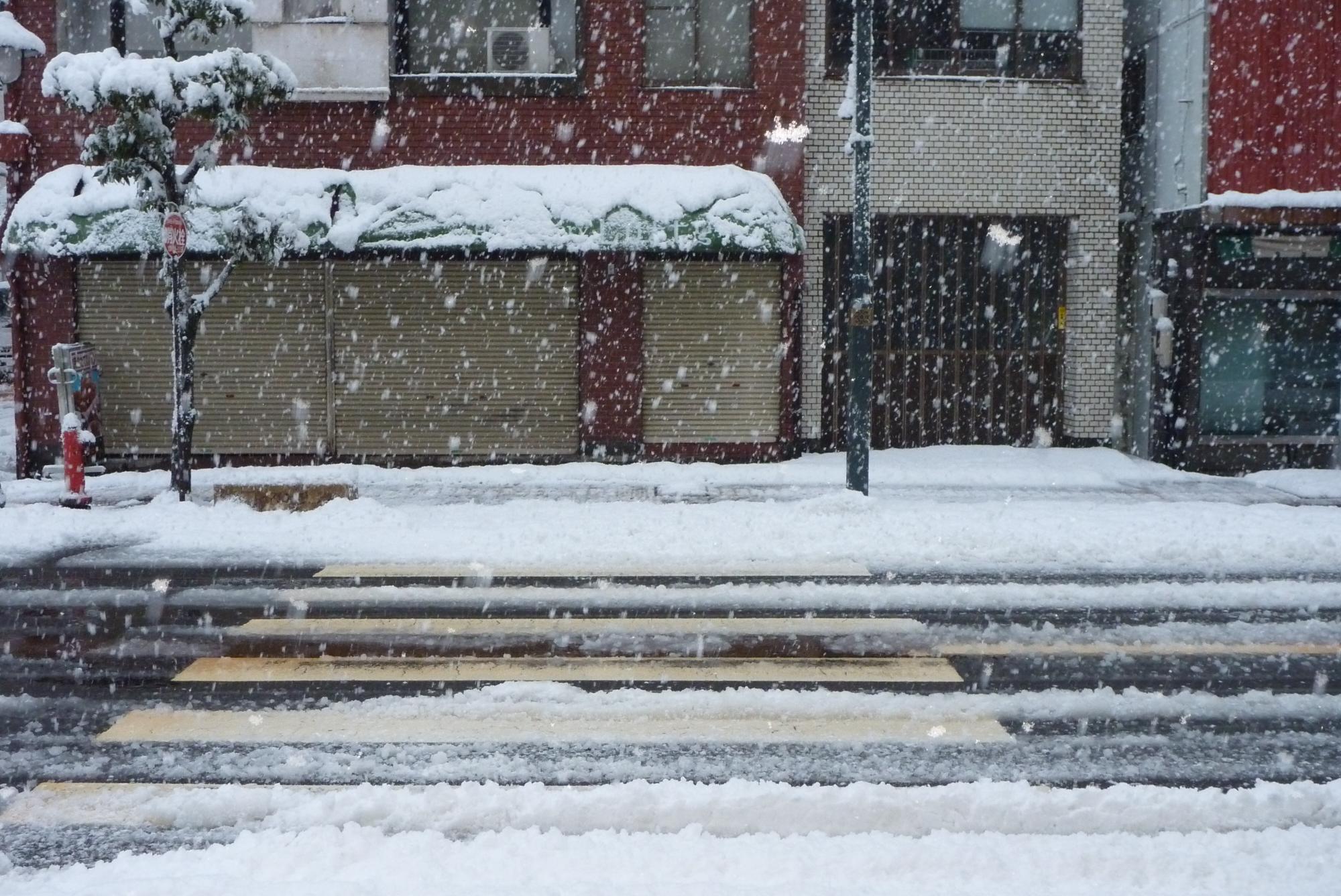 表通りの雪1