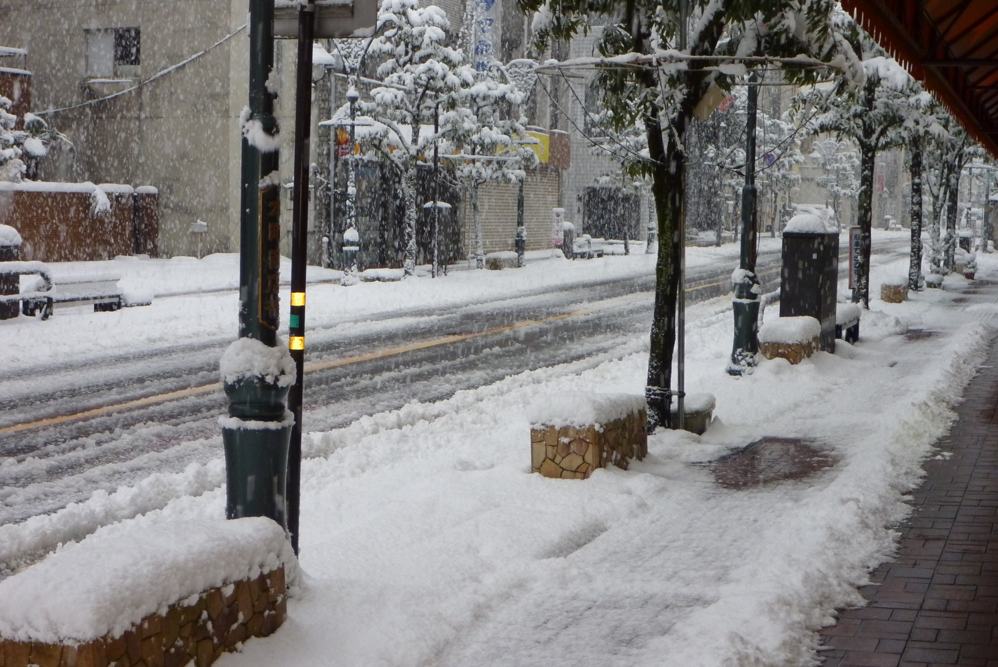 表通りの雪2
