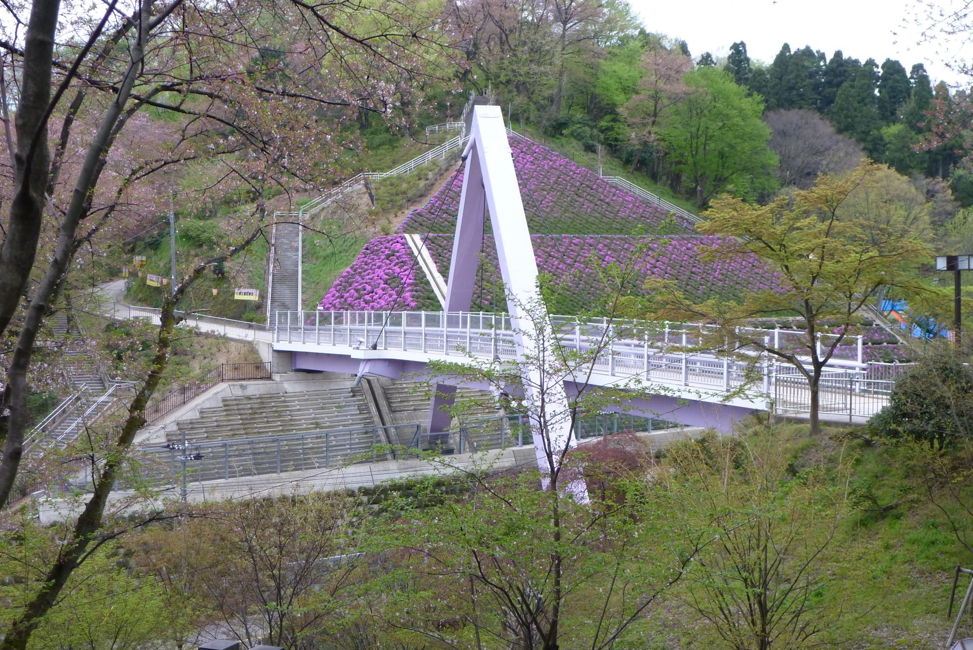 4月20日の西山橋
