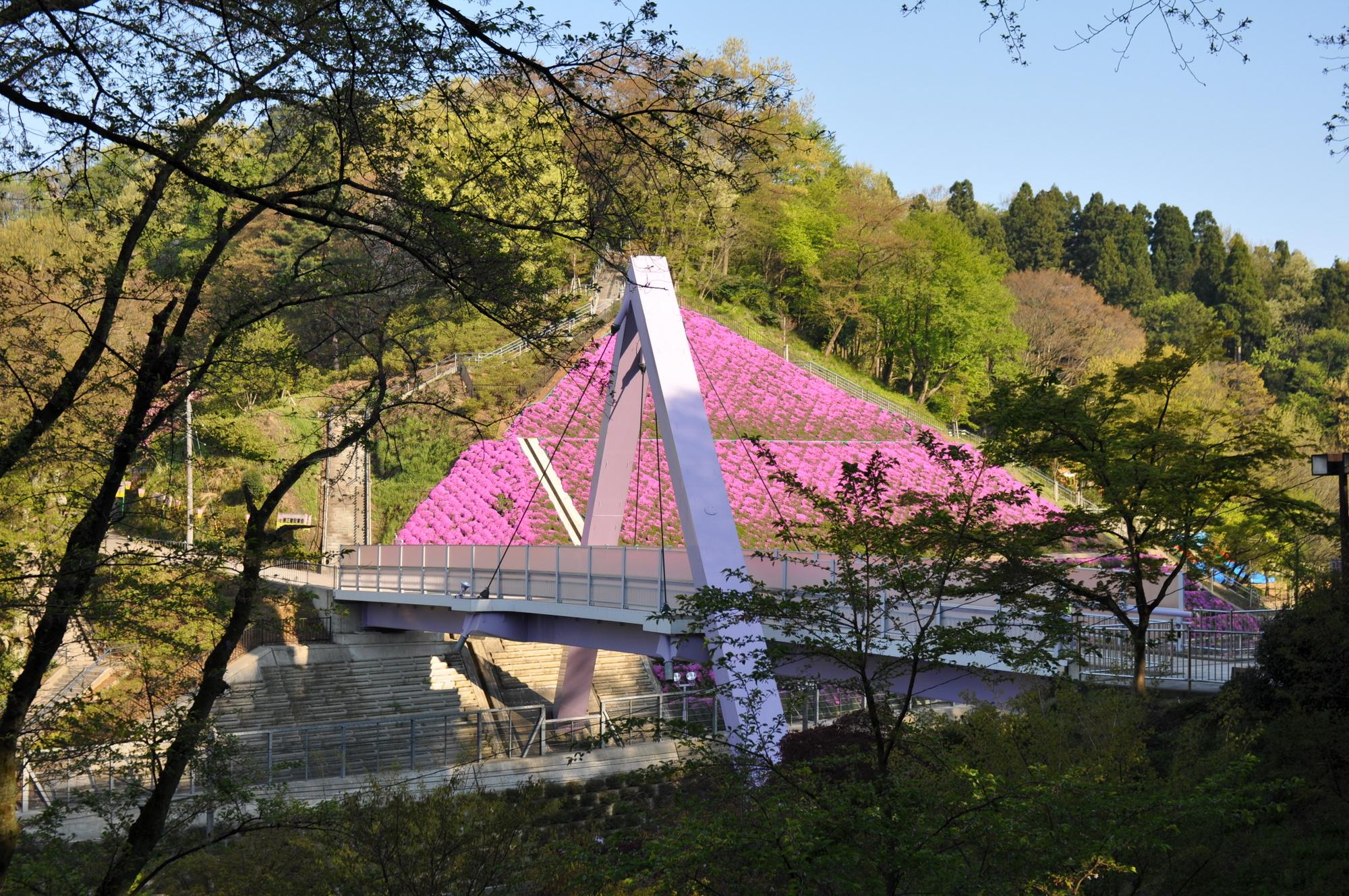 4月25日の西山橋