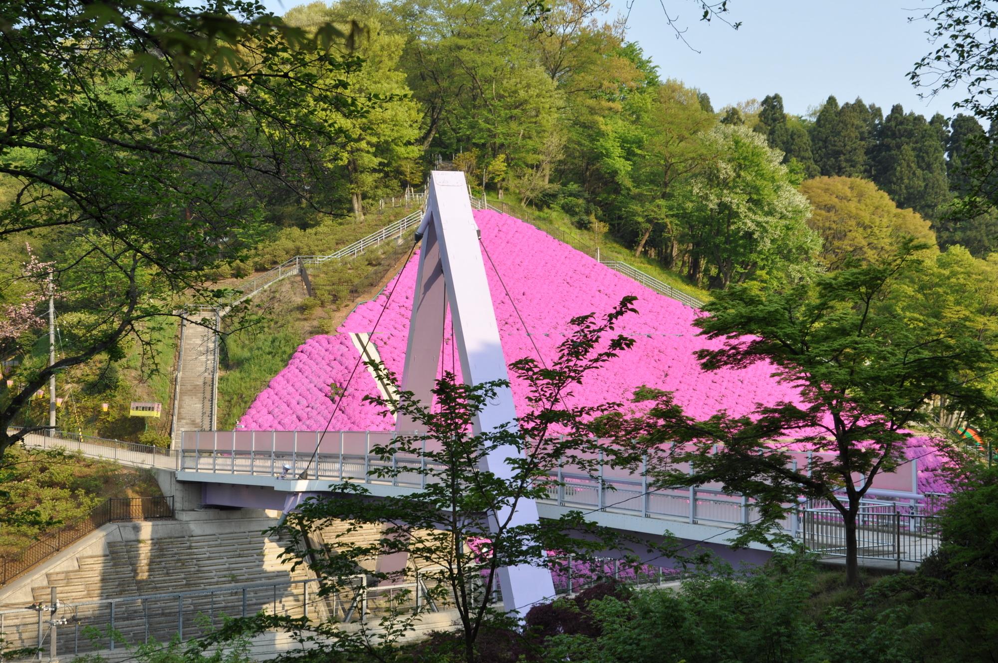 5月2日の西山橋