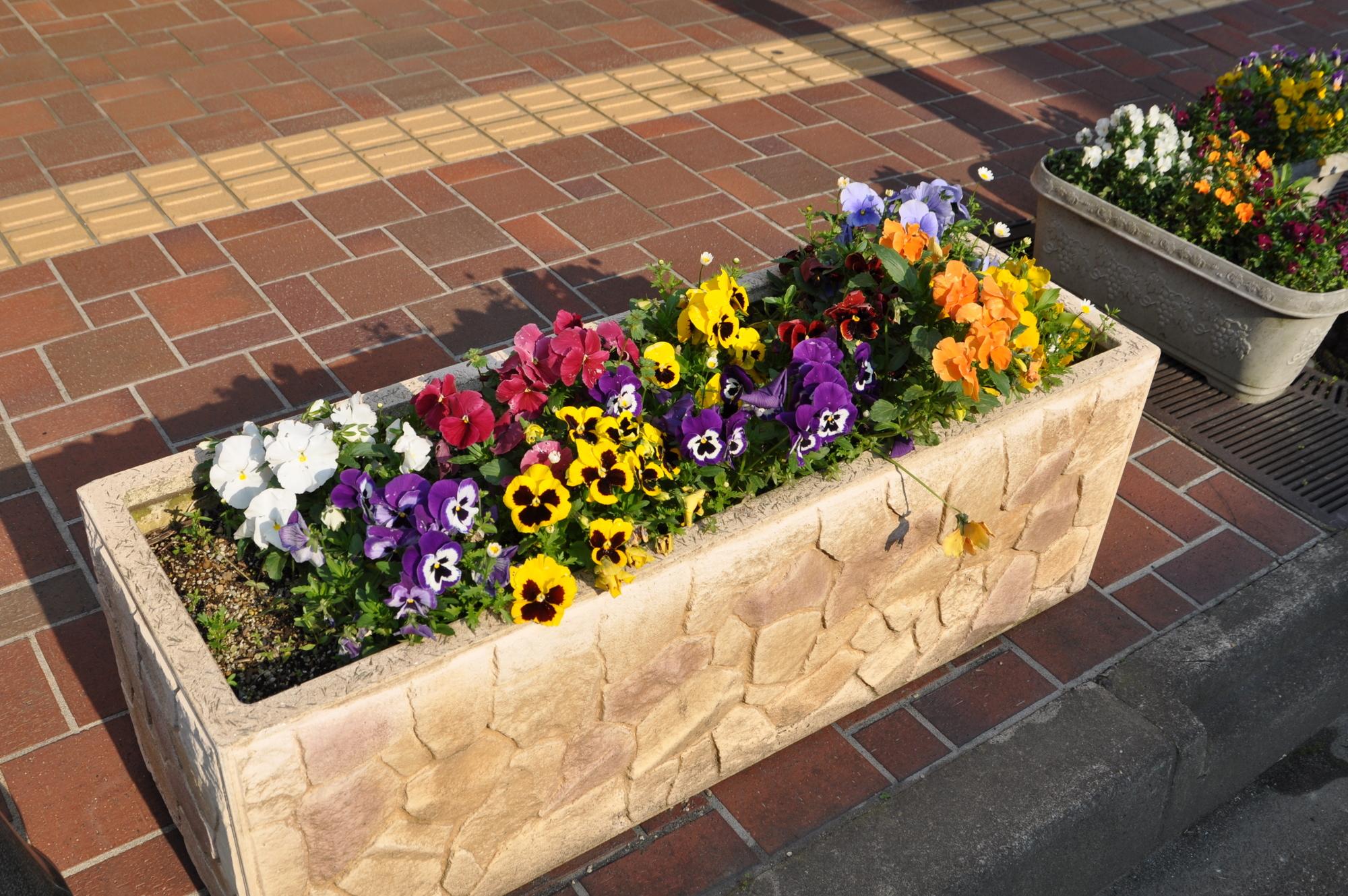 商店街の花壇