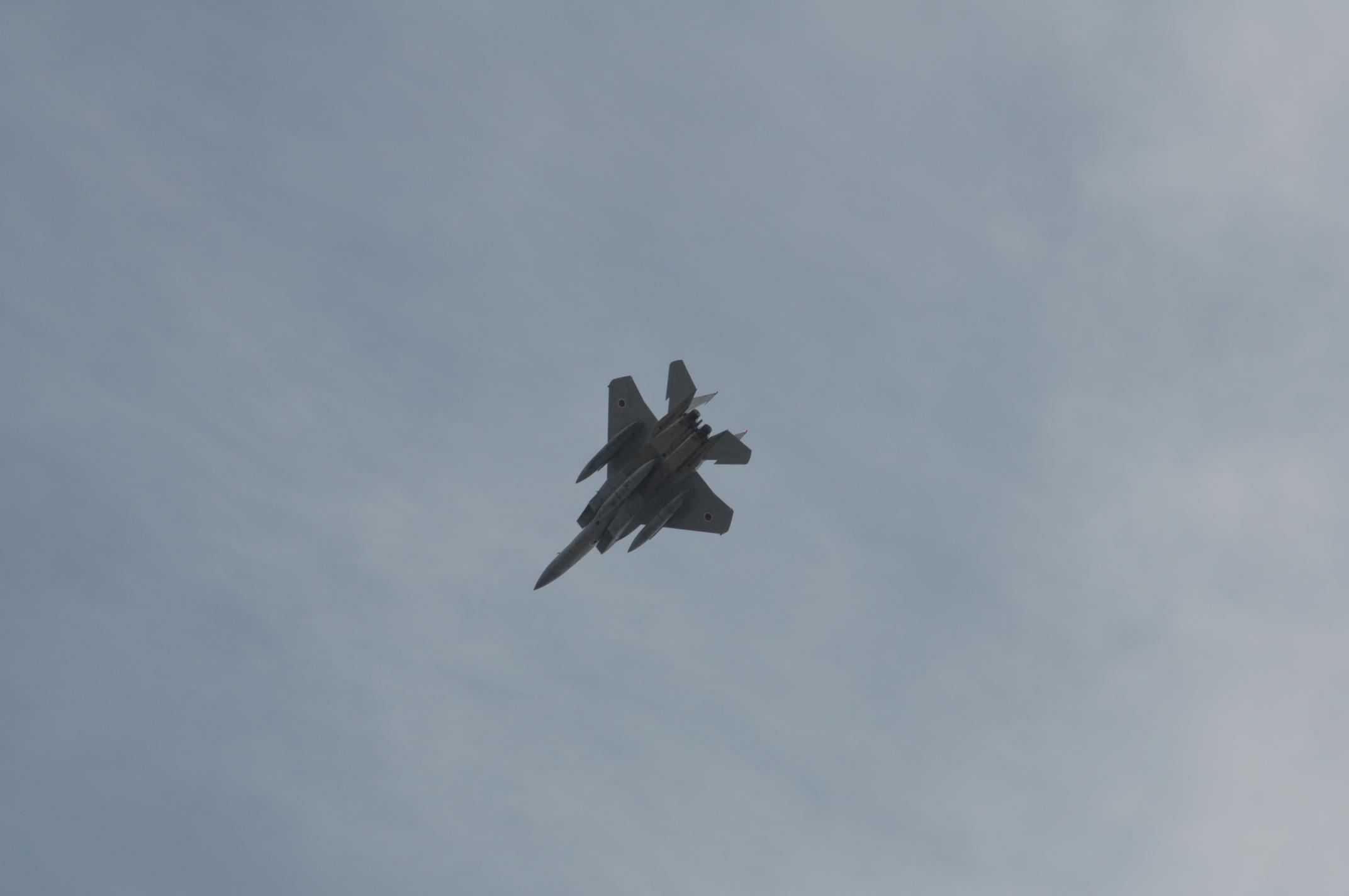 真上のF15-1機目